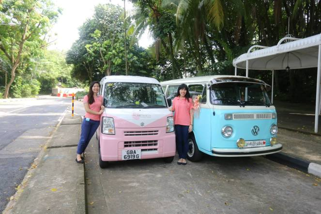 Cute pink van VS the original VW kombi