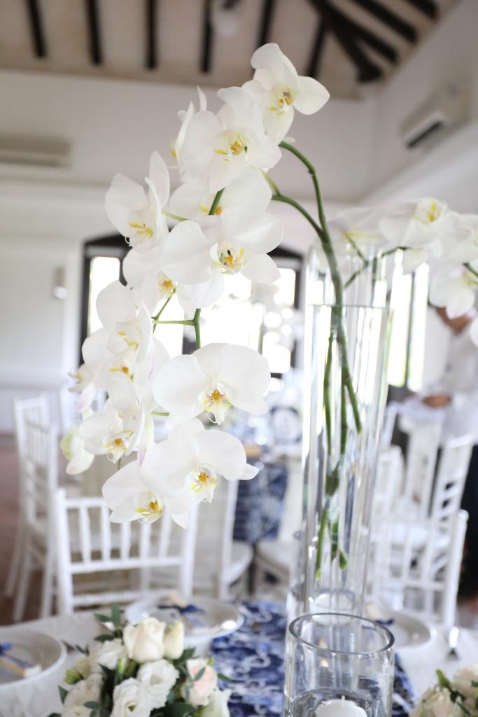 White phalaenopsis in tall jars